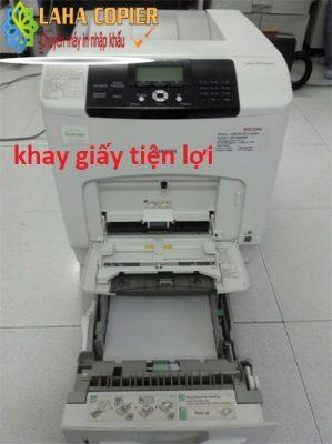 khay giấy mặc định của máy in